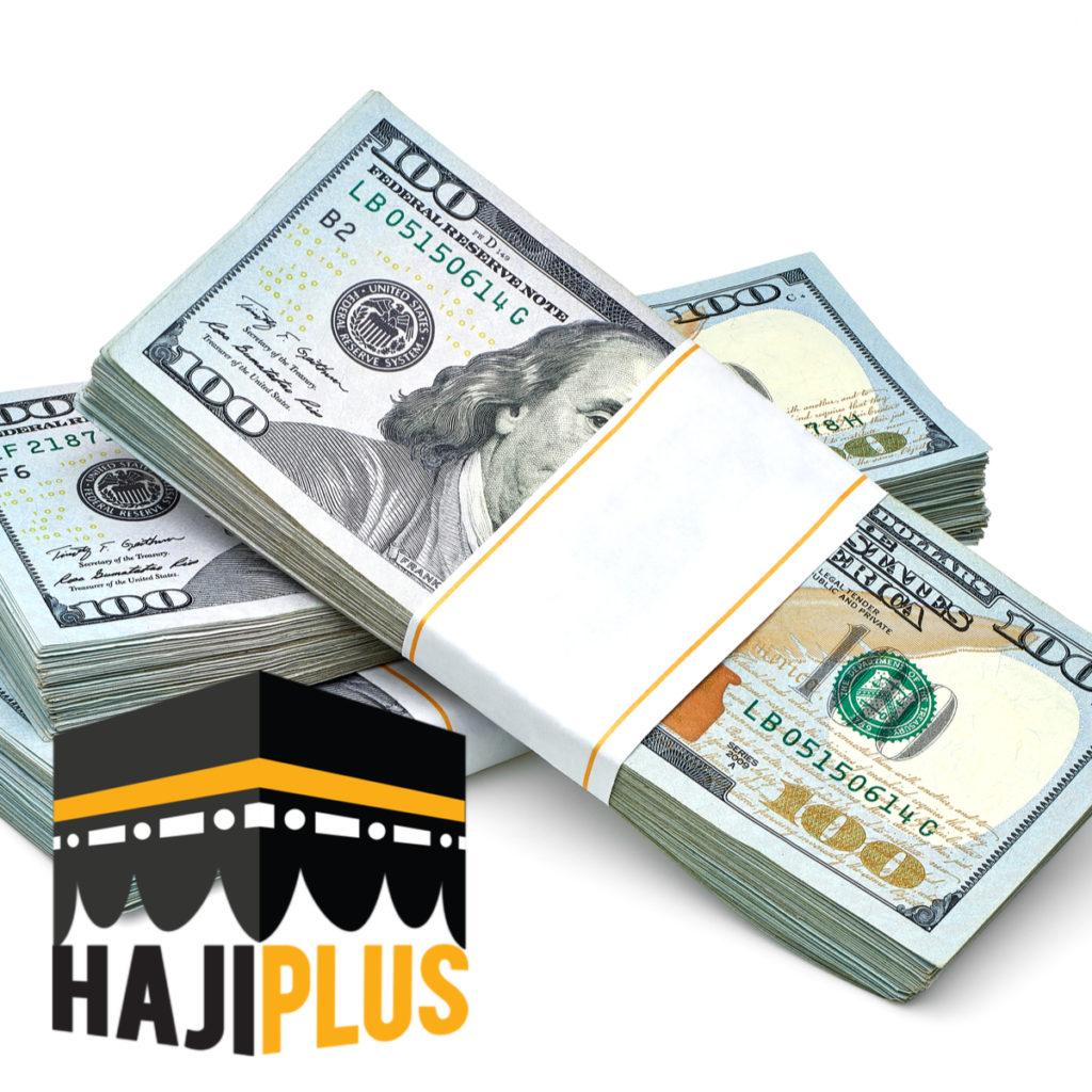 Biaya visa haji furoda diperkirakan mulai dari 15.000 USD. Biaya pelunasannya harus segera dibayarkan ketika calon jama'ah haji telah mendapatkan visa berstempel pihak kedutaan langsung